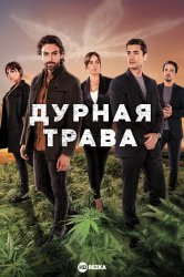 Смотреть Дурная трава онлайн в HD качестве 720p